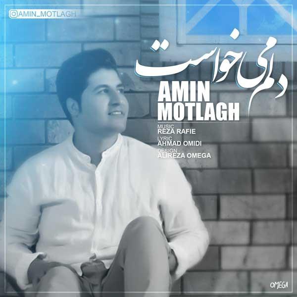 Amin Motlagh - Delam Mikhast
