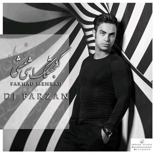 DJ Farzan – Gonjeshkake Ashimashi (Remix)
