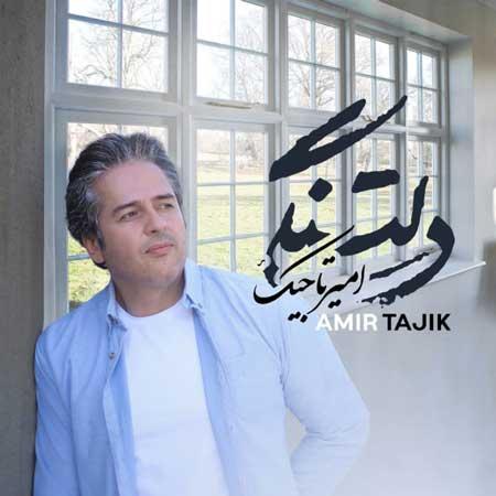 آهنگ امیر تاجیک به نام دلتنگی